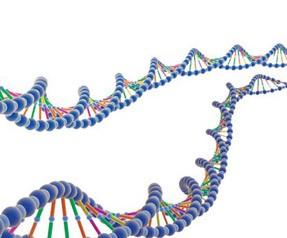 İkinci DNA kodu bulundu!